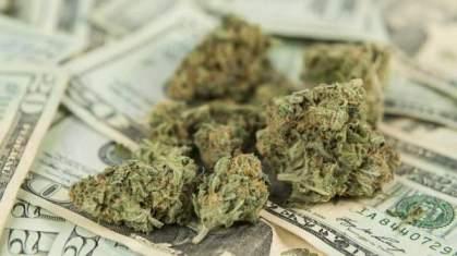 Mennyibe kerül az első drogos év?